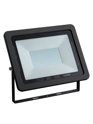 PROYECTOR DE AREA LED 100W 5000K 10000LM IP65 IK10 SLIM DL